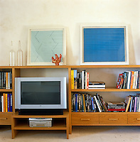 Contemporary wooden shelves house a selection of books and a television set