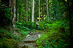 Summer in Olympic National Park in Washington State.