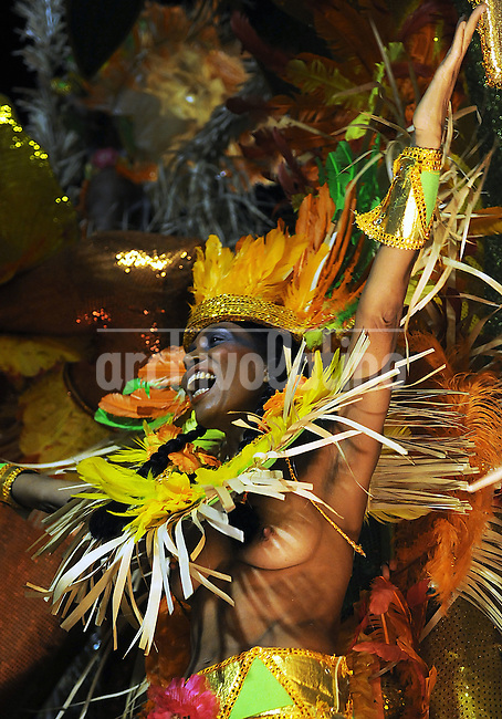 A member of a samba school performs during parade at the Sambadrome, Rio de Janeiro, Brazil, March 1, 2014.  (Austral Foto/Renzo Gostoli)