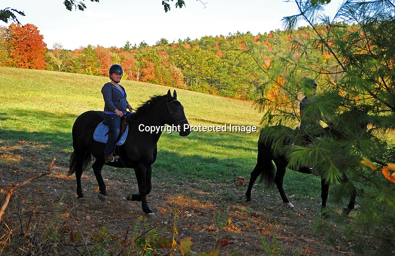 Horseback Riders Enjoying Trail Riding in Late Afternoon Sunshine in New Hampshire USA