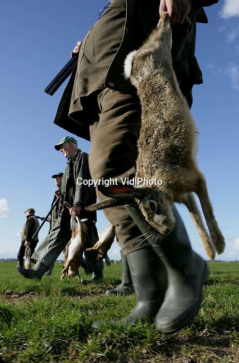 Foto: VidiPhoto..STOMPETOREN - Jagers van de wildbeheereenheid (WBE) Schermer jagen op de eerste zaterdag van het nieuwe jachtseizoen (17-10-2009) op hazen in de buurt van de bollenvelden bij Stompetoren in Noord-Holland. De jagers vangen twee vliegen in één klap. Behalve dat ze een verse hazenbout voor de pan hebben, zorgen ze er tevens voor dat de schade door wild aan de bollenvelden en andere landbouwgewassen straks binnen de perken blijft.
