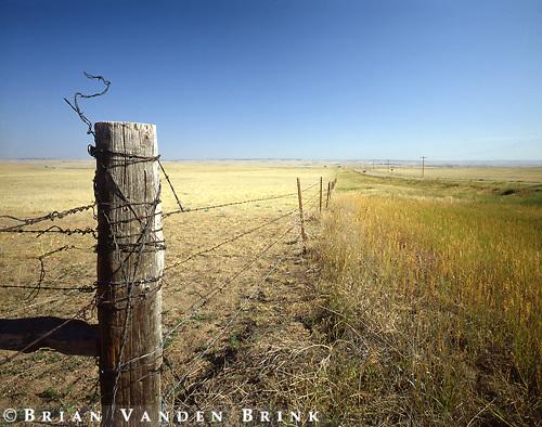 Barbed Wire.Sand Hills Region, Western Nebraska