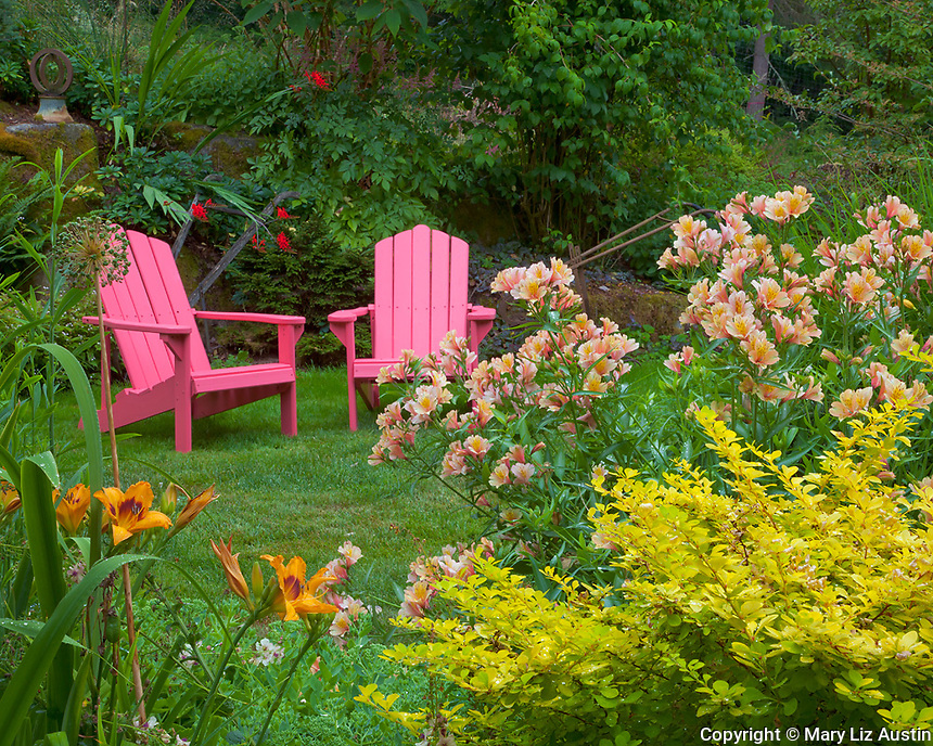 Vashon-Maury Island, WA<br /> A perennial garden featuring barberry, alstromeria and day lilies leads to two brightly colored adirondack chairs.