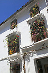 Attractive display of plants flowering on window ledges, Grazalama, Cadiz Province, Spain