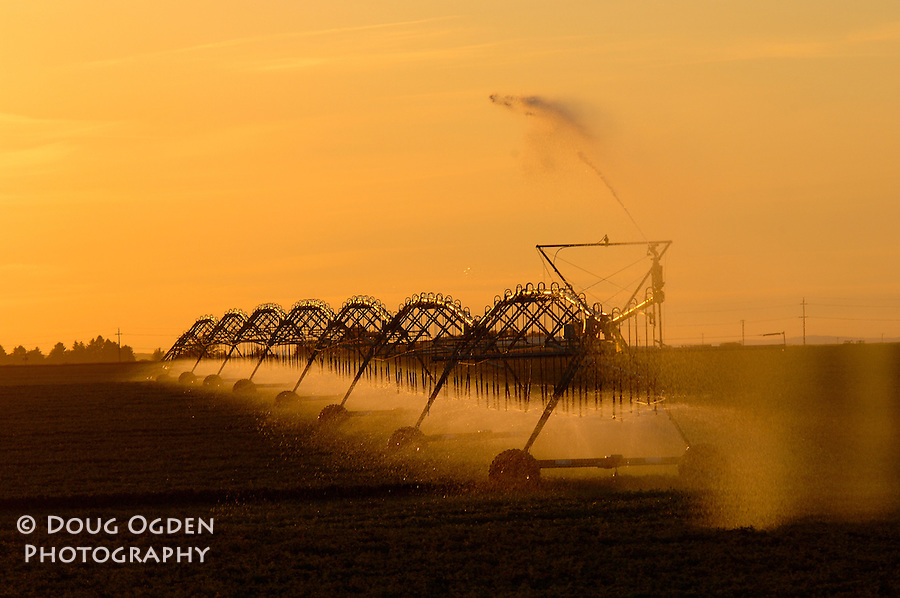 Irrigation sprinkler in Eastern Washington