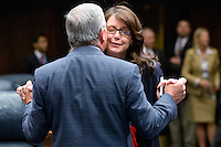 TALLAHASSEE, FLA. 5/3/13-SESSIONEND050313CH-Sen. Lizbeth Benacquisto, R-Fort Meyers, right, celebrates the passage of a wide-ranging health care bill with Sen. Garrett Richter, R-Naples, at the close of the final day of the legislative session May 3, 2013 at the Capitol in Tallahassee...COLIN HACKLEY PHOTO