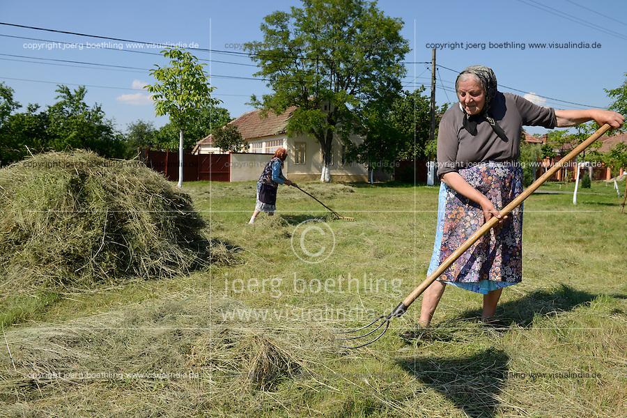 ROMANIA Banat, Cruceni, women dry gras / RUMAENIEN Banat, Cruceni, Frauen trocknen Heu