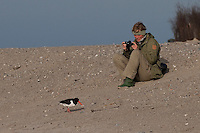 Austernfischer und Fotografin, Frau fotografiert, Strand, Haematopus ostralegus, oystercatcher