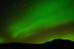 Northern lights (Aurora borealis) dancing across the sky at Bandlands National Park, South Dakota.