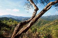 Cuba, Berge bei Alto de Cotilla, Provinz Guantanamo