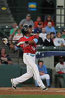 Myrtle Beach Pelicans outfielder Chris Garia #4 at bat during a game against the Salem Red Sox at Ticketreturn.com Field at Pelicans Ballpark on April 5, 2014 in Myrtle Beach, South Carolina. Salem defeated Myrtle Beach 5-2. (Robert Gurganus/Four Seam Images)