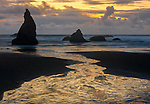 Bandon State Park, OR  &copy; Terry Donnelly<br /> Sunset reflections at low tide with silhouetted seastacks at Bandon Beach