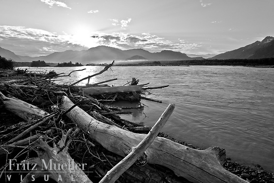 Logs along the Taku River, Northern B.C.