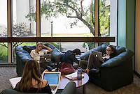 Students study in the Academic Commons during finals week, Dec. 9, 2015.<br />