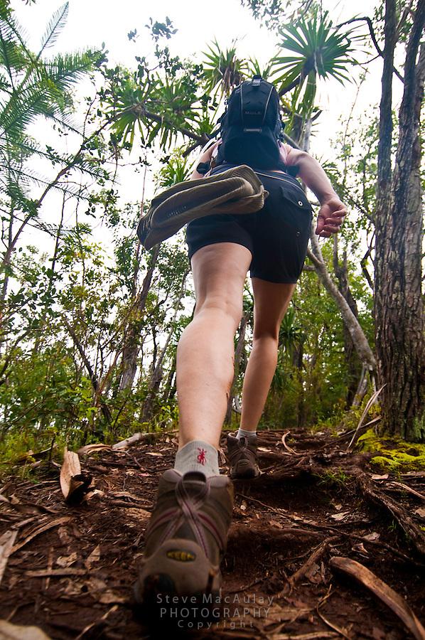 Hiking the Okolehao Trail, Kauai, Hawaii