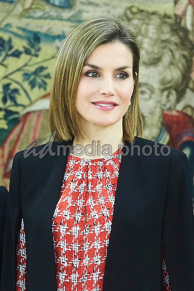 08 January 2016 Madrid, Spain - Queen Letizia with representatives of the Gypsy Secretariat Foundation during an audience at the Zarzuela Palace in Madrid, Spain. Photo Credit: PPE/face to face/AdMedia