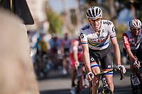 Daryl Impey (ZAF/Mitchelton-Scott) up the Poggio climb<br /> <br /> 110th Milano-Sanremo 2019 (ITA)<br /> One day race from Milano to Sanremo (291km)<br /> <br /> ©kramon