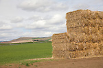 Northeastern Oregon, Pacific Northwest, U.S.A., ranch country, baled hay, Blue Mountains, spring,