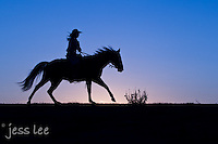 cowgirl riding at sunrise Cowboys working and playing. Cowboy Cowboy Photo Cowboy, Cowboy and Cowgirl photographs of western ranches working with horses and cattle by western cowboy photographer Jess Lee. Photographing ranches big and small in Wyoming,Montana,Idaho,Oregon,Colorado,Nevada,Arizona,Utah,New Mexico.