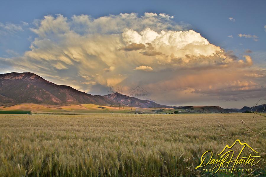 Thunderhead, Sunset, Swan Valley, Idaho