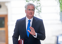 Defence Secretary Michael Fallon arrives for the cabinet meeting at 10 Downing street