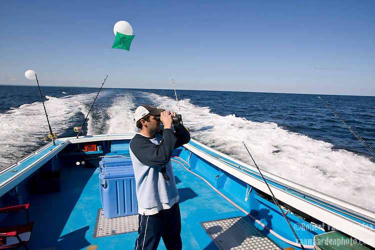A fisherman scans the water with binoculars looking for Blue Fin Tuna. Gulf of St. Lawrence near North Rustico, PEI, Canada.