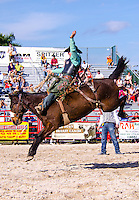 Cowboy competes in Saddle Bronc RIding at 65th year of The Homestead Rodeo, Homestead, FL, on January 26, 2014