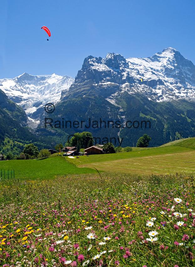 CHE, Schweiz, Kanton Bern, Berner Oberland, Grindelwald: Paraglider und Eiger Nordwand | CHE, Switzerland, Bern Canton, Bernese Oberland, Grindelwald: Paraglider + Eiger north face