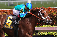 02-03-18 Holy Bull Gulfstream Stakes