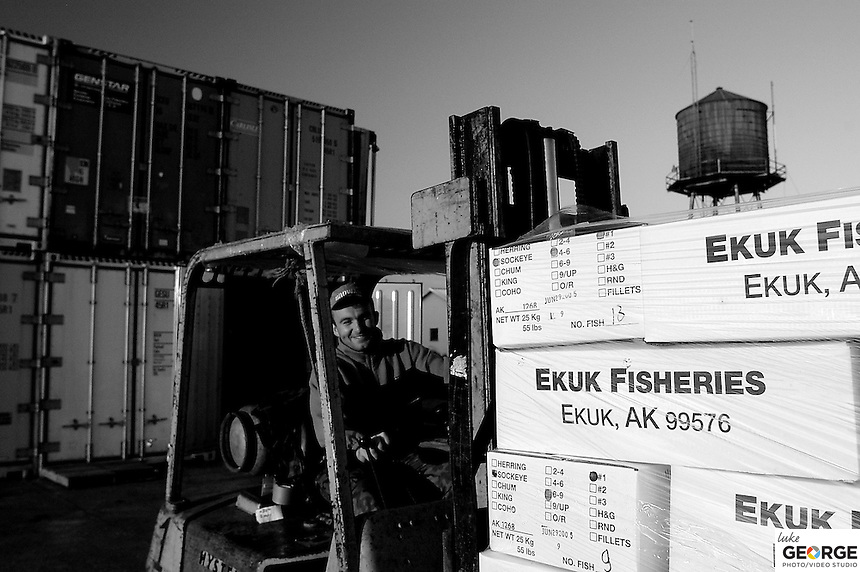 A friendly Polish worker loads the packaged fish into containers most likely headed by barge to Japan where the high-graded fish fetch the highest price.