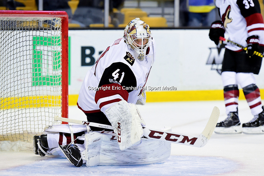 Tuesday, February 28, 2017: Arizona Coyotes goalie Mike Smith (41) warms up prior to the National Hockey League game between the Arizona Coyotes and the Boston Bruins held at TD Garden, in Boston, Mass. Boston defeats Arizona 4-1. Eric Canha/CSM