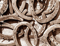 Warm toned sepia image of a bunch of old horseshoes piled onto an old wooden barn plank. The sun is raking over the scene throwing a hard shadow.