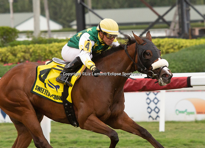 February 1st, 2020: #4 Cheermeister with jockey Emisael Jaramillo on  board wins the Sweetest Chant G3 Stakes during the Holy Bull Stakes Day at Gulfstream Park Race Track in Hallandale Beach, Florida. Liz Lamont/Eclipse Sportswire/CSM