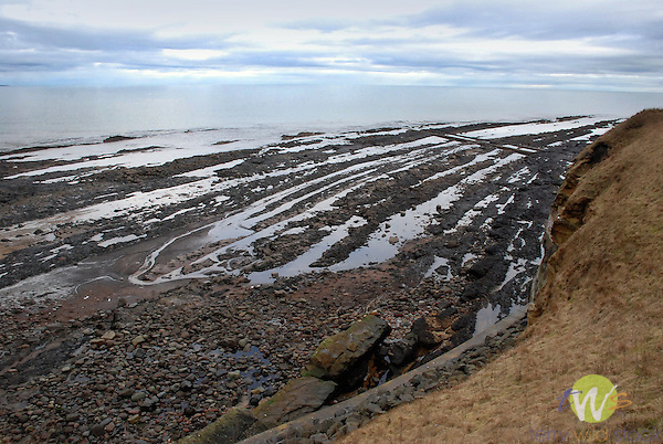 North Sea with rocky jetty.