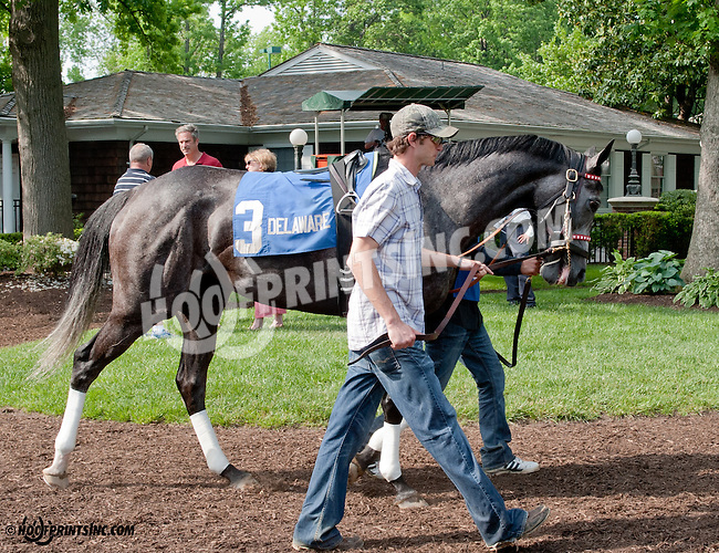 Bryan's Jewel before The Winter Melody Stakes at Delaware Park on 5/22/13