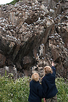 Kinder beobachten Dreizehenmöwe, Kolonie, Brutkolonie, Vögel auf ihren Nestern in einer Felswand, Vogelfelsen, Vogelfels, Dreizehen-Möwe, Möwe, Dreizehenmöve, Rissa tridactyla, kittiwake