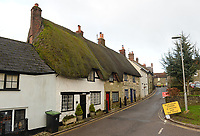 BNPS.co.uk (01202 558833)<br /> Pic: BNPS<br /> <br /> Pictured: A few thatch cottages remain on Angel Lane today.<br /> <br /> These charming photos reveal everyday life at the turn of the 20th century in a thriving market town later made famous by a TV advert.<br /> <br /> The black and white snapshots of Shaftesbury, Dorset, were taken by Albert Tyler who set up a photography business there in 1901.<br /> <br /> There are various street scenes and also images of the locals in traditional attire, with men in flatcaps and women in bonnets.<br /> <br /> Tyler photographed the busy opening of the town market in 1902, and a garden party where men played croquet.