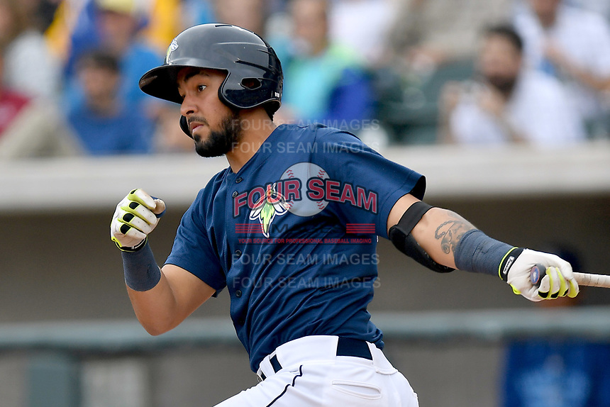 Catcher Ali Sanchez (20) of the Columbia Fireflies bats in a game against the Lexington Legends on Sunday, April 23, 2017, at Spirit Communications Park in Columbia, South Carolina. Lexington won, 4-2. (Tom Priddy/Four Seam Images)