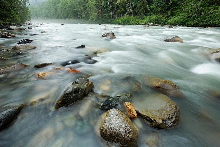 Stillaguamish River near Verlot Campground, Mt Baker Snoqualmie National Forest, Washington, USA