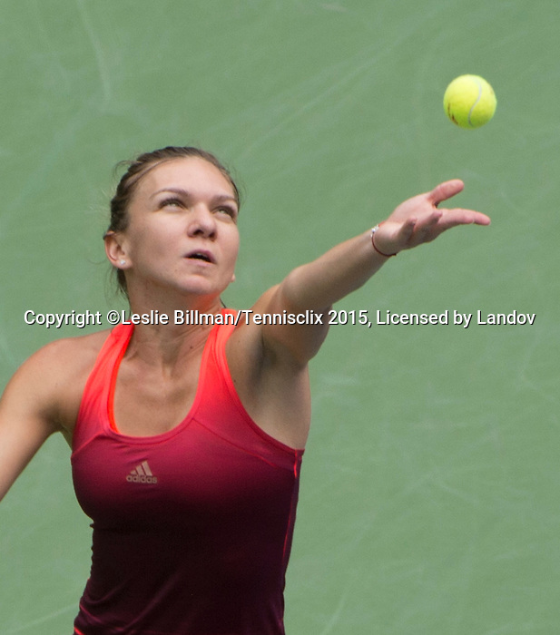 Simone Halep (ROU) loses to Flavia Panetta (ITA) 6-1, 6-3 in the semifinals at the US Open in Flushing, NY on September 11, 2015.