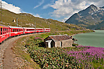 The Bernina Express runs along the Lago Bianco, a lake formed by the Scala and Arlas dams; the lake is also the location of the highest train stations, Ospizio Bernina, at 2,253 meters with the Diavolezza mountain in the background
