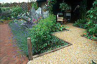 Lavender herb in bloom around weathered wood with brick path, pebble patio Lavandula angustifolia, backyard flower beds