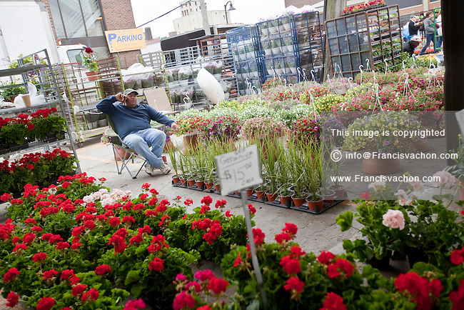 A flowers vendor speaks on his cellphone as he wait for clients in Detroit Eastern Farmers market in Detroit (Mi) Saturday June 8, 2013. The largest open-air flowerbed market in the United States, the Eastern Market is a historic commercial district in Detroit, Michigan.