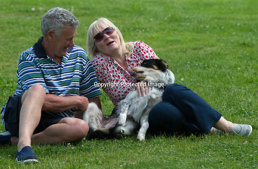 """04/07/15<br /> <br /> Scar on Yumi's belly shows where vets removed 'testicles'.<br /> <br /> <br /> John (67) and Susan (62) Martin photographed with Yumi, yesterday at Colliefest, in Ashbourne, Derbyshire.<br /> <br /> Full story here: http://www.fstoppress.com/articles/hermaphrodite-dog/<br /> <br /> The new owners of this rescued one-year-old Border Collie were stunned when their vets discovered that their new dog was neither male nor female, but both.<br /> <br /> John and Susan Martin picked up Yumi, a healthy young dog, from Protecting Preloved Border Collies in May. """"Soon after we got her home she developed an infection in her 'lady-bits'"""" said John.<br /> <br /> """"They feared she had Pyometra - an infection of the uterus which can be fatal in dogs if not caught quickly"""" he added.<br /> <br /> Their local vets in Hull treated her with antibiotics and anti inflammatory drugs.<br /> <br /> When she didn't seem to be getting any better they took a closer look and noticed what they thought was a bone growing out of her vulva. Yumi was referred to the Small Animal Teaching Hospital in Liverpool who identified 'the bone' as growing male genitalia.<br /> <br /> Yumi had surgery to remove the growth. Then a second operation to spay her revealed what vets first believed to be tumours on her ovaries. But these tumours were discovered to be testicle tissue. They were also removed successfully. The vets explained that although Yumi was 'intersex' (or hermophrodite) she was more female than male.<br /> <br /> All Rights Reserved: F Stop Press Ltd. +44(0)1335 418629   www.fstoppress.com."""