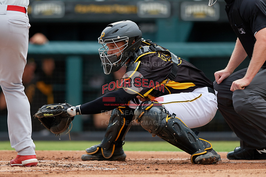 Bradenton Marauders catcher Deon Stafford (37) awaits the pitch during a Florida State League game against the Palm Beach Cardinals on May 10, 2019 at LECOM Park in Bradenton, Florida.  Bradenton defeated Palm Beach 5-1.  (Mike Janes/Four Seam Images)