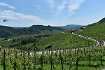 The peloton pass through Prosecco wine country during Stage 19 of the 2019 Giro d'Italia, running 151km from Treviso to San Martino di Castrozza, Italy. 31st May 2019<br /> Picture: Fabio Ferrari/LaPresse | Cyclefile<br /> <br /> All photos usage must carry mandatory copyright credit (© Cyclefile | Fabio Ferrari/LaPresse)