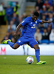 Bruno Ecuele Manga of Cardiff City during the Championship match at the Cardiff City Stadium, Cardiff. Picture date: August 15th 2017. Picture credit should read: Simon Bellis/Sportimage