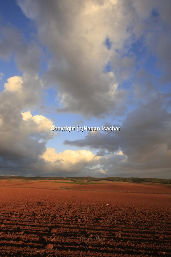 Israel, Shephelah, fields by road 358