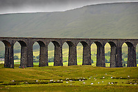 Ribblehead Viaduct,Ribblehead, North Yorkshire.