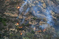 Flames burn on a hillside in Malibu Canyon, Malibu, California October 21, 2007. The wildfire fanned by powerful winds burned out of control on Sunday in the celebrity seaside enclave of  Malibu, forcing hundreds of people to flee and destroying a handful of multimillion-dollar homes. Photo by Nina Prommer/Milestone Photo.